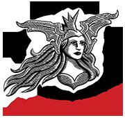 Liberator Valkyrie Logo